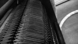 A lemezes hőcserélő sokféle területen használatos
