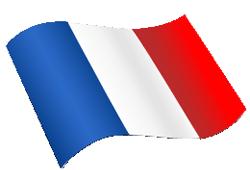 magyar francia fordító